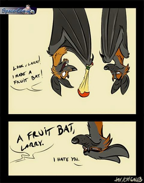 funny comics bat picture