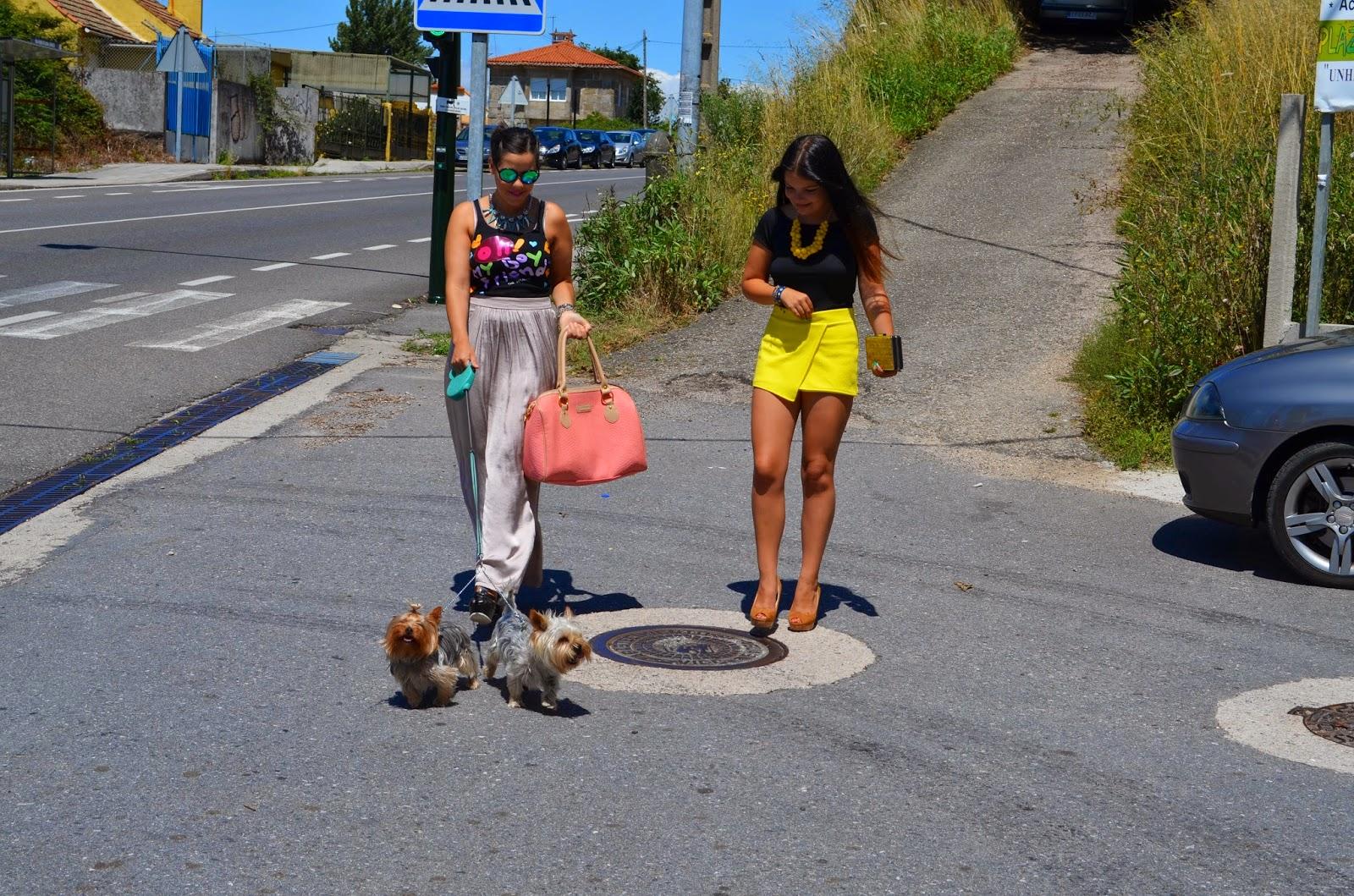 http://amigasyresidentesenstylestation.blogspot.com.es/2014/07/leo-y-duna.html