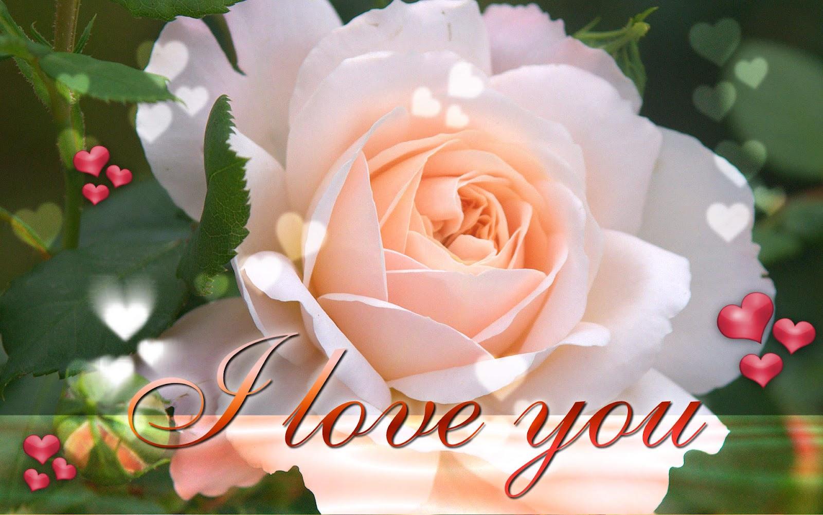 http://4.bp.blogspot.com/-3rCicfod5fo/T-6vas9jjLI/AAAAAAAAB5k/Sqs5RHnhjus/s1600/I-Love-You-Wallpaper-Desktop.jpg