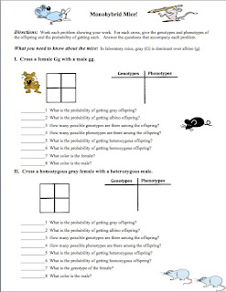 Worksheets Monohybrid Crosses Worksheet Answers classroom freebies monohybrid mice this is a two page worksheet that has 4 problems each problem requires the student to fill in punnett square table of genotypes