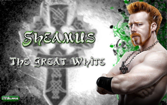 wwe sheamus new desktop wallpapers   Welcome To Wallpapers