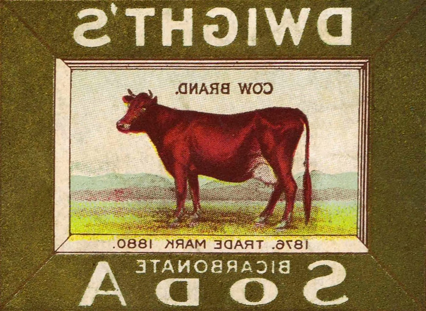 Antique Advertisement Graphics Cow Image on Flour Sack Towel from http://knickoftimeinteriors.blogspot.com/2014/01/new-reader-submissions-feature.html