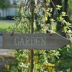 Jag går under kategorin trädgårdsfreak