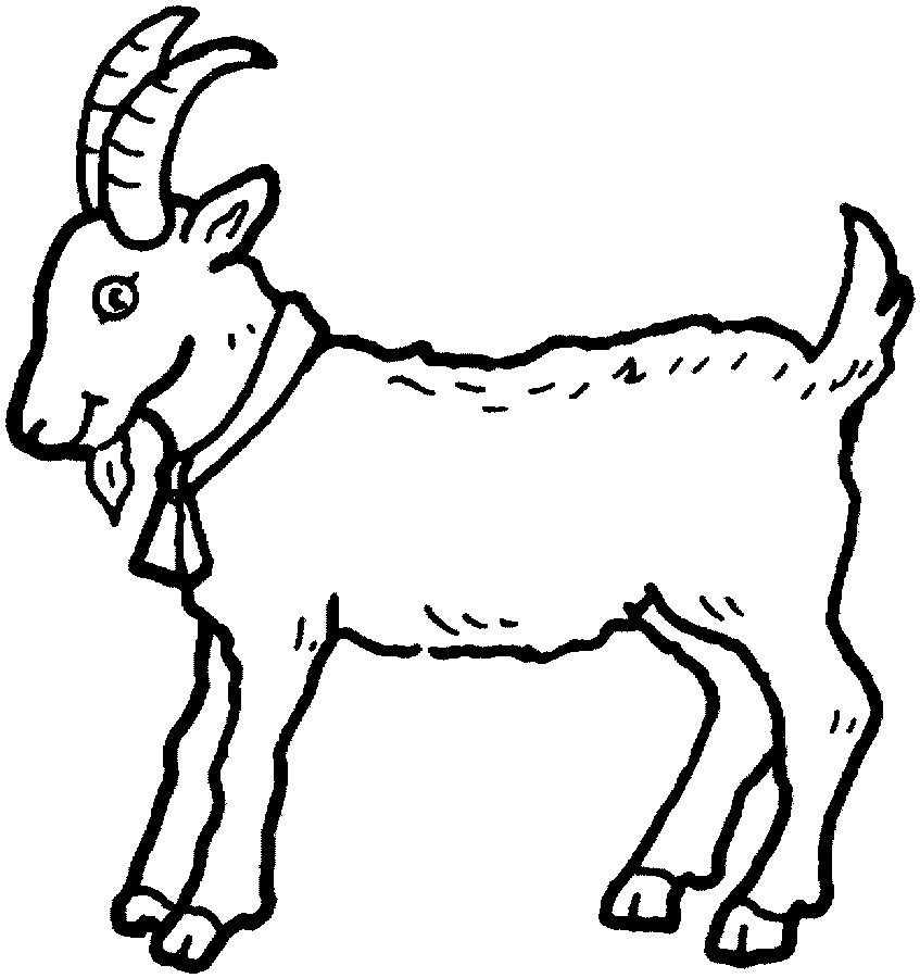 19 Animal Goats Printable Coloring