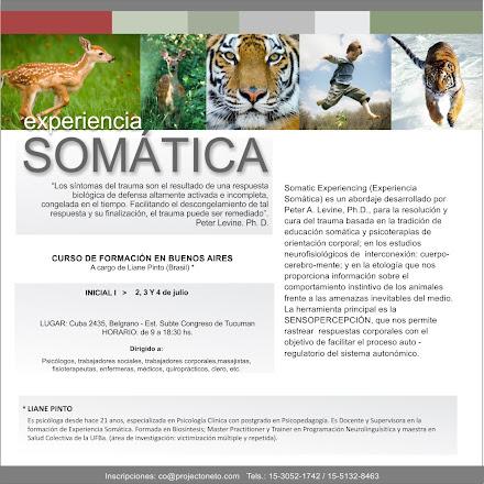 Formación en Experiencia Somática en Bs As  Julio 2,3,4 Iniciante 1nivel
