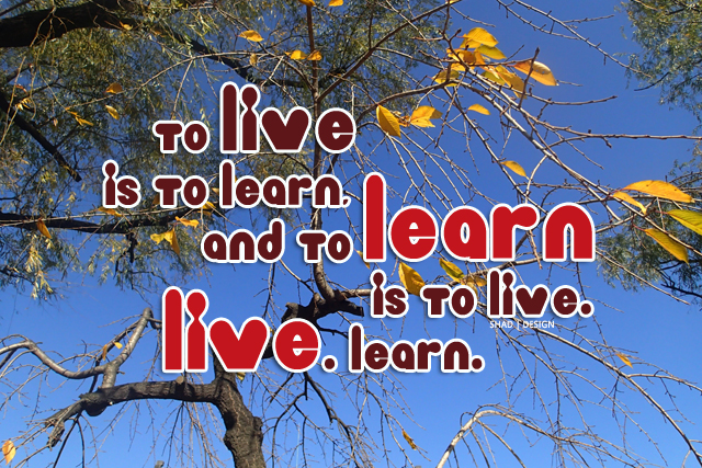 live and learn quote