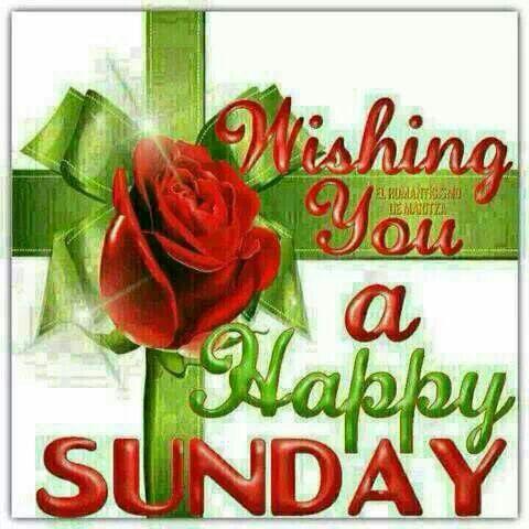 Whatsapp happy sunday m4hsunfo