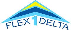 Flex1delta voando pelos céus do Rio desde de 2003