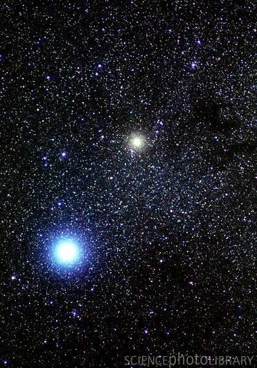 Regulus Star Notes: A Summer Triangle, Eagle, and Family ...
