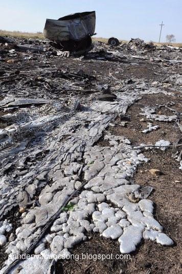 Cận cảnh máy bay Malaysia MH17 bị rơi vì tên lửa bắn 2