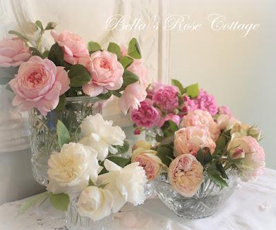Открытки с розами или пионами 377