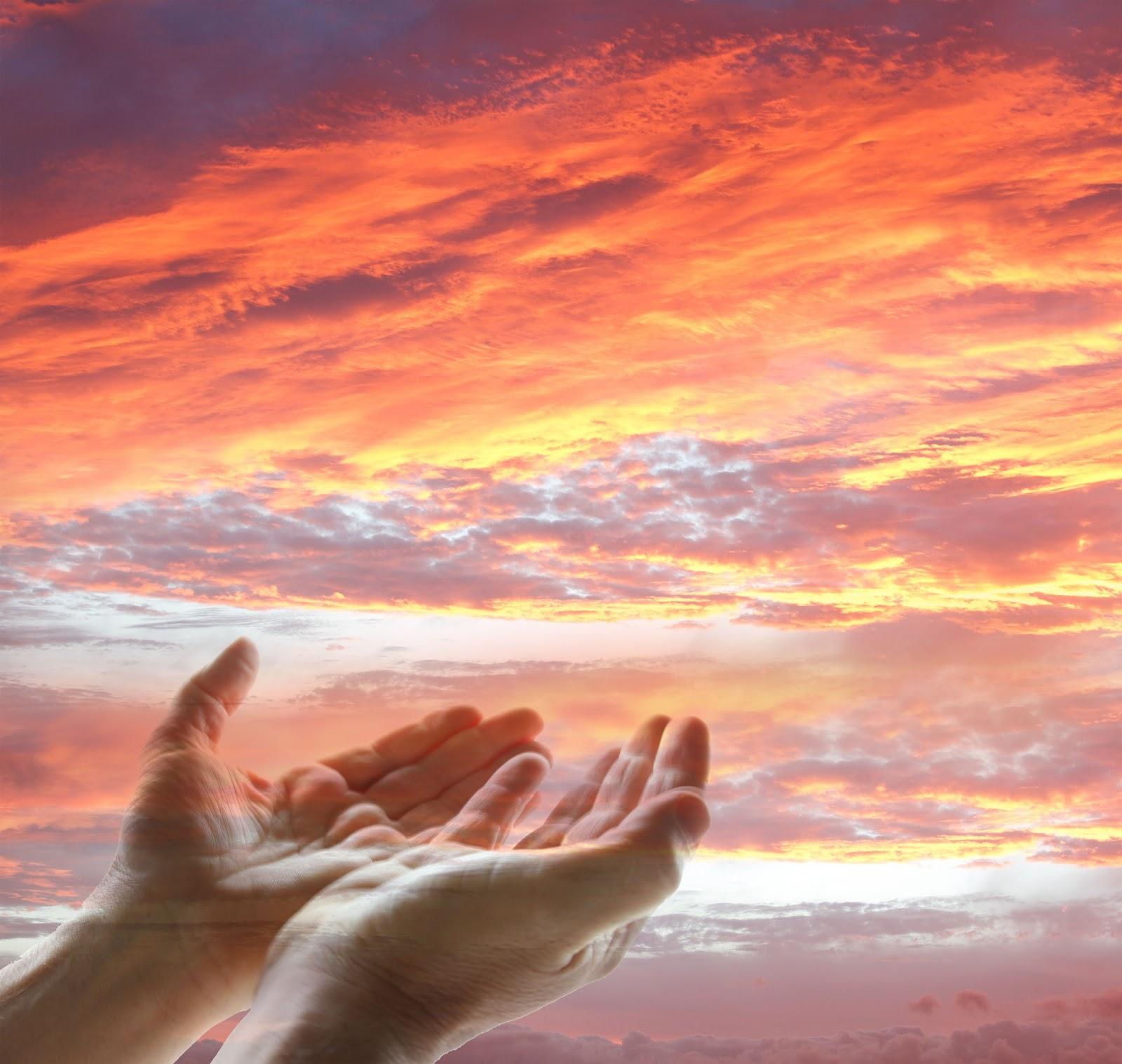 Свои руки к небу с хвалою простираю тебя создатель жизни фонограмма
