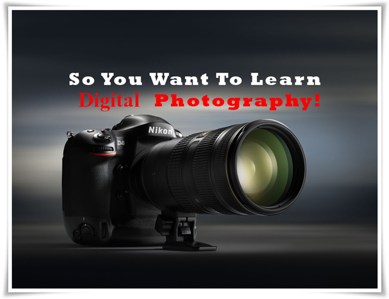 Digital Photography Tutorials and Tips