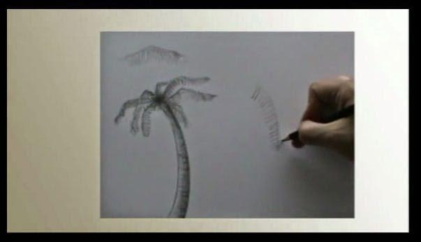 abbozzo paesaggio tropicale