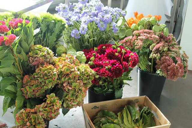 Blumenmeer 1000 gute Gruende