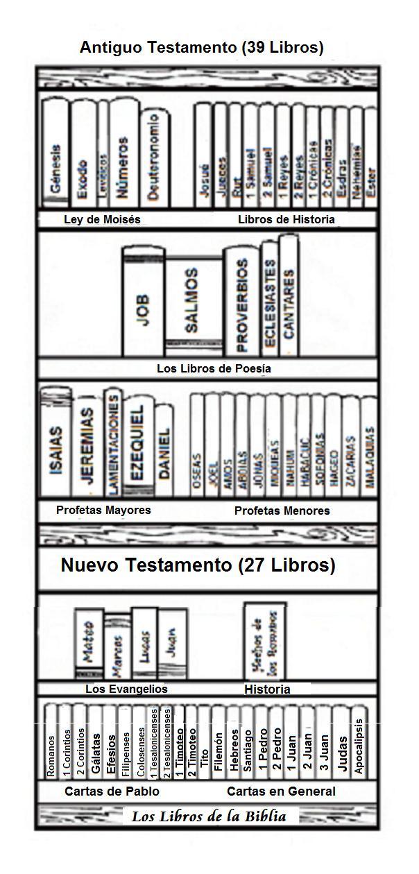 Dulce Miel: Biblia - verdadera biblioteca 66 libros