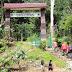 Tropical Rainforest Heritage of Sumatera