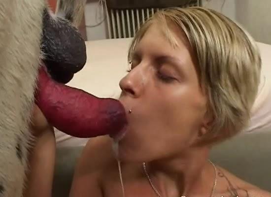 24 horas de sexo en la mansion de nacho vidal 1