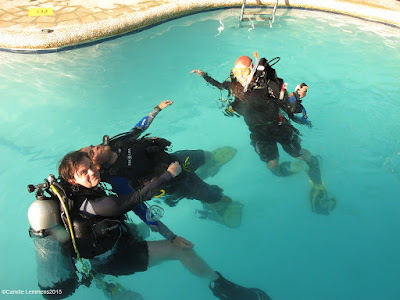 PADI IDC for November 2015 in Moalboal, Philippines has reached the half way mark
