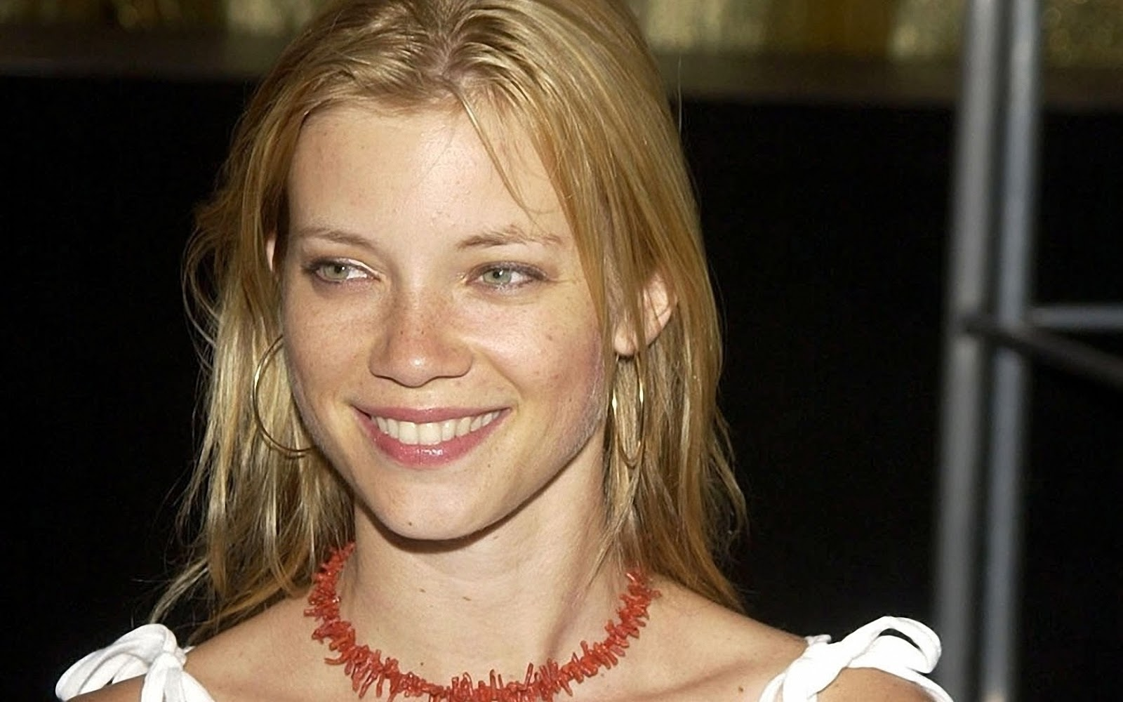 Amy Smart Hd Wallpaper