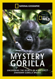 Mystery Gorilla - Journey deep into the unforgiving jungle to uncover the secrets of these mysterious giants.