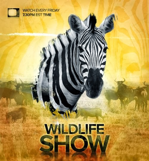 Wildlife TV Show Poster