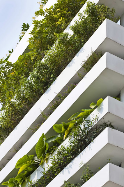 Close up photo of small balconies on the facade used for vegetation