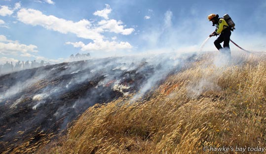 Firefighter fights fire - grass fire in Lane Rd, Havelock North photograph