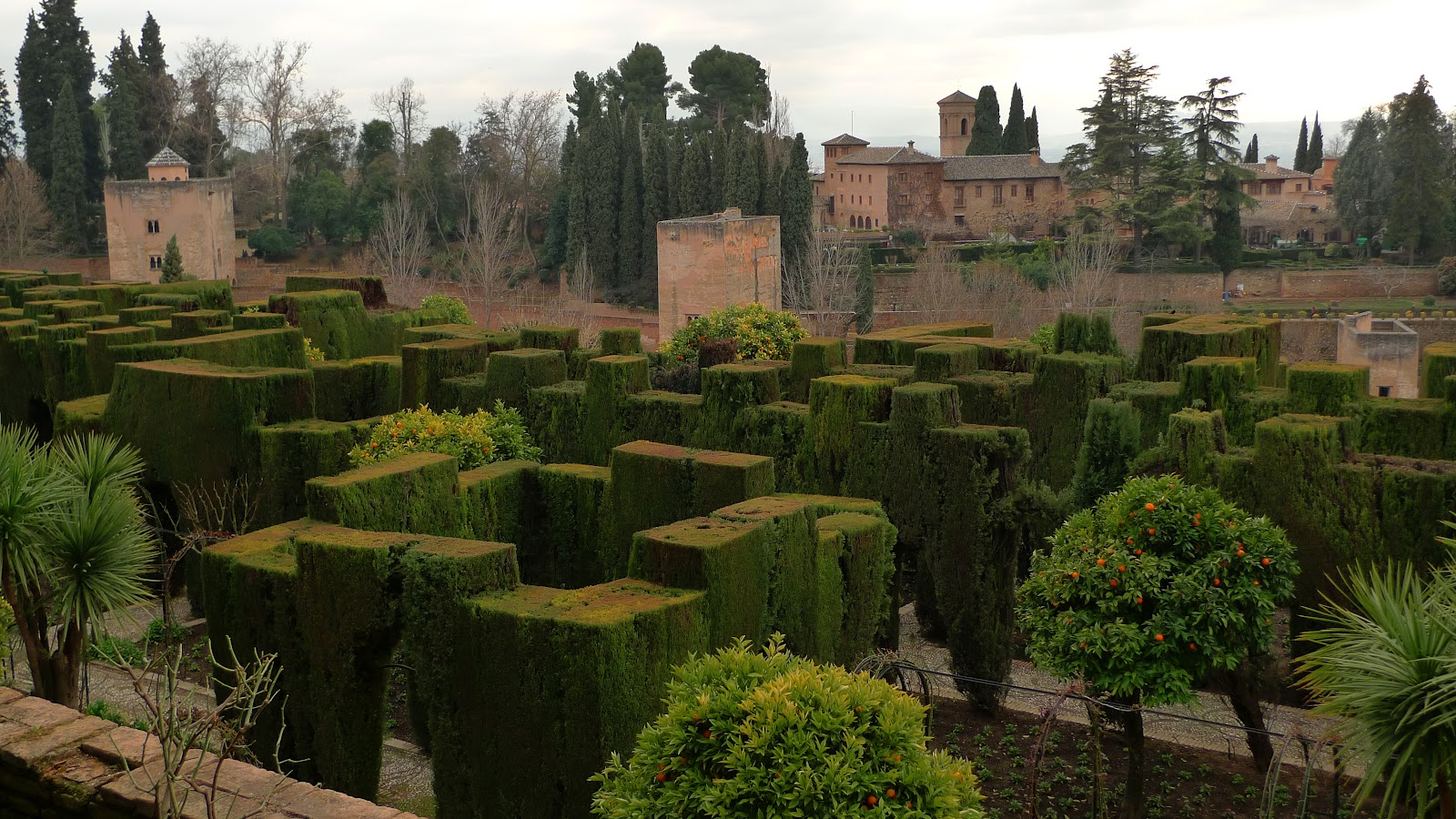Cypress Hedges In The Lower Gardens Of Generalife With Alhambra Background