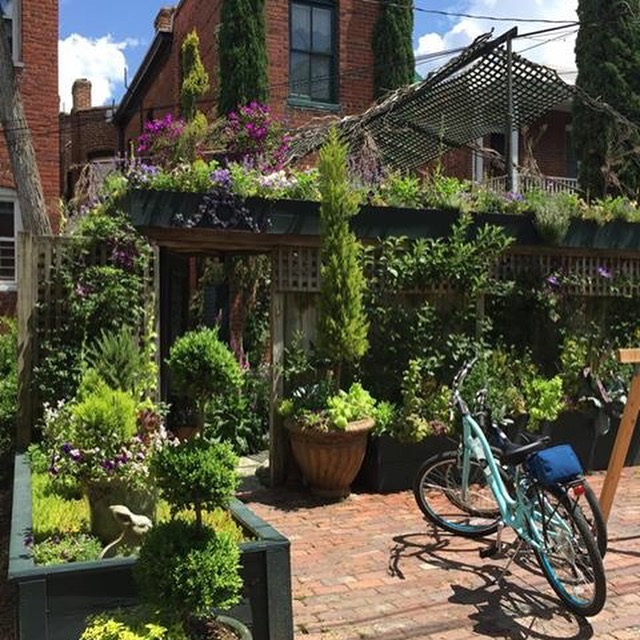 Pedal through Petals: A Guided Cycling Tour of Richmond's Gardens