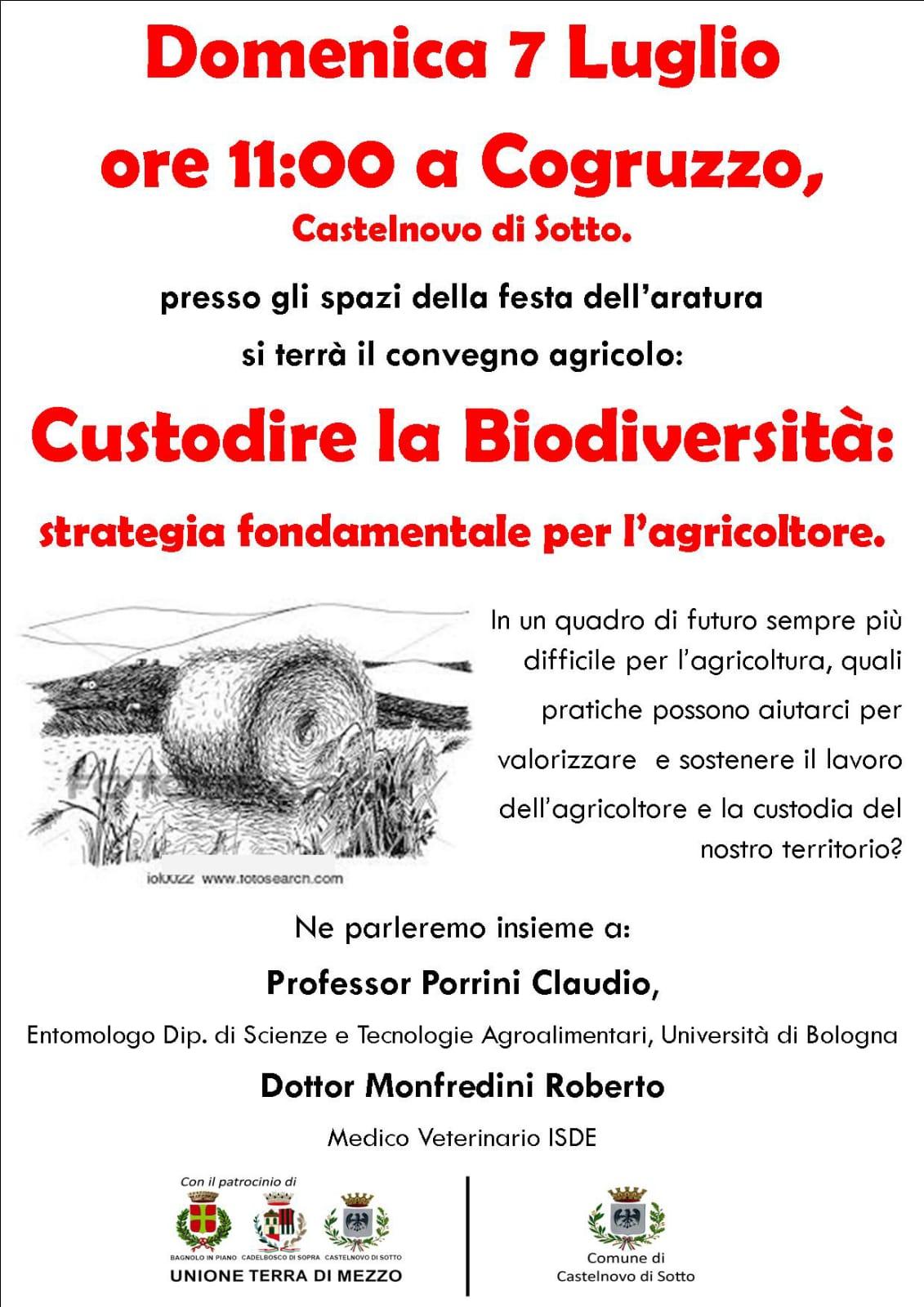 Castelnovo Sotto Domenica 7 luglio