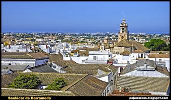Sanlúcar (Costa Noroeste Cádiz)