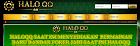 WWW.HALOQQ.COM