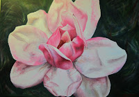 Painting of a Magnolia cultivar