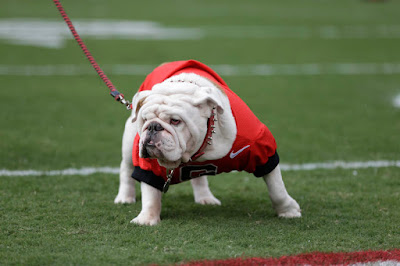 Georgia mascot Uga IX to retire.