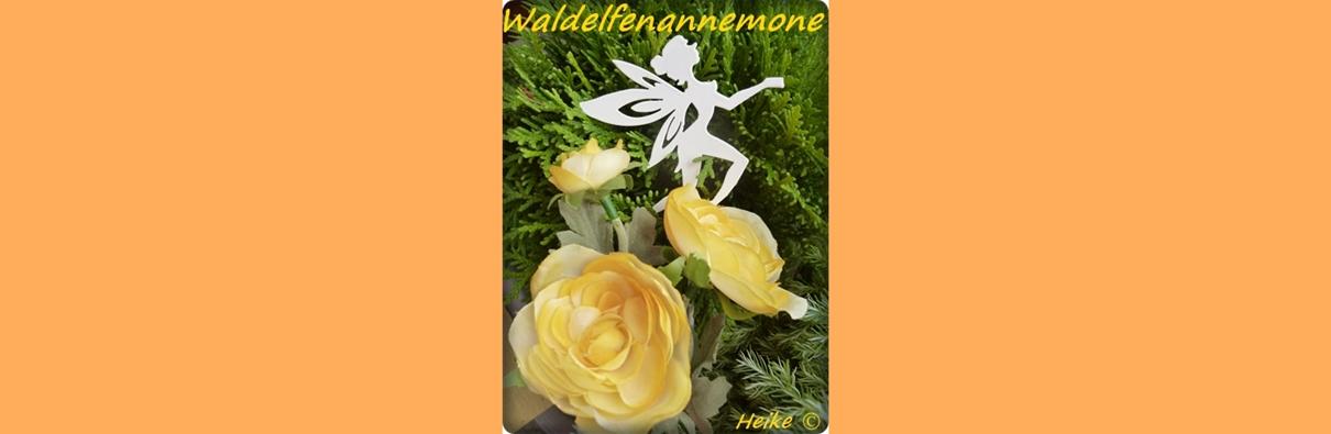 waldelfenannemone