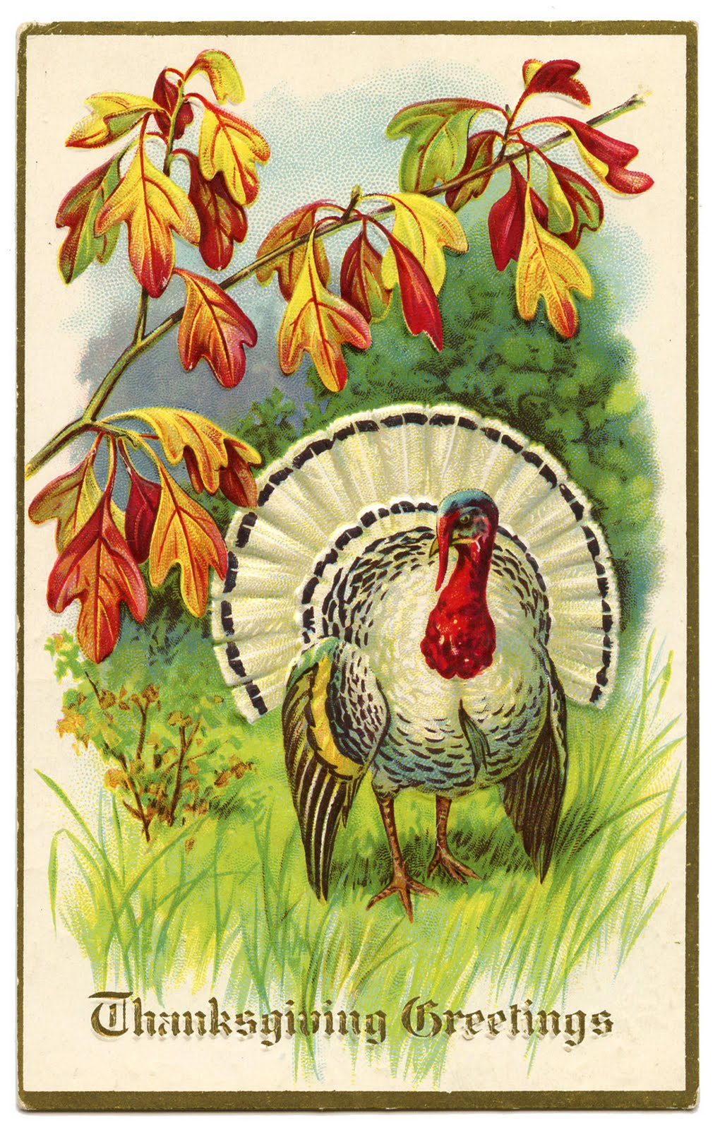 Images Of Old Fashioned Thanksgiving Greetings