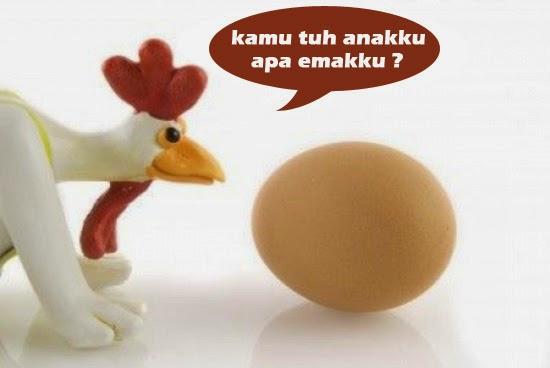 Lebih Dulu Telur Atau Ayam ? Ini Jawabannya