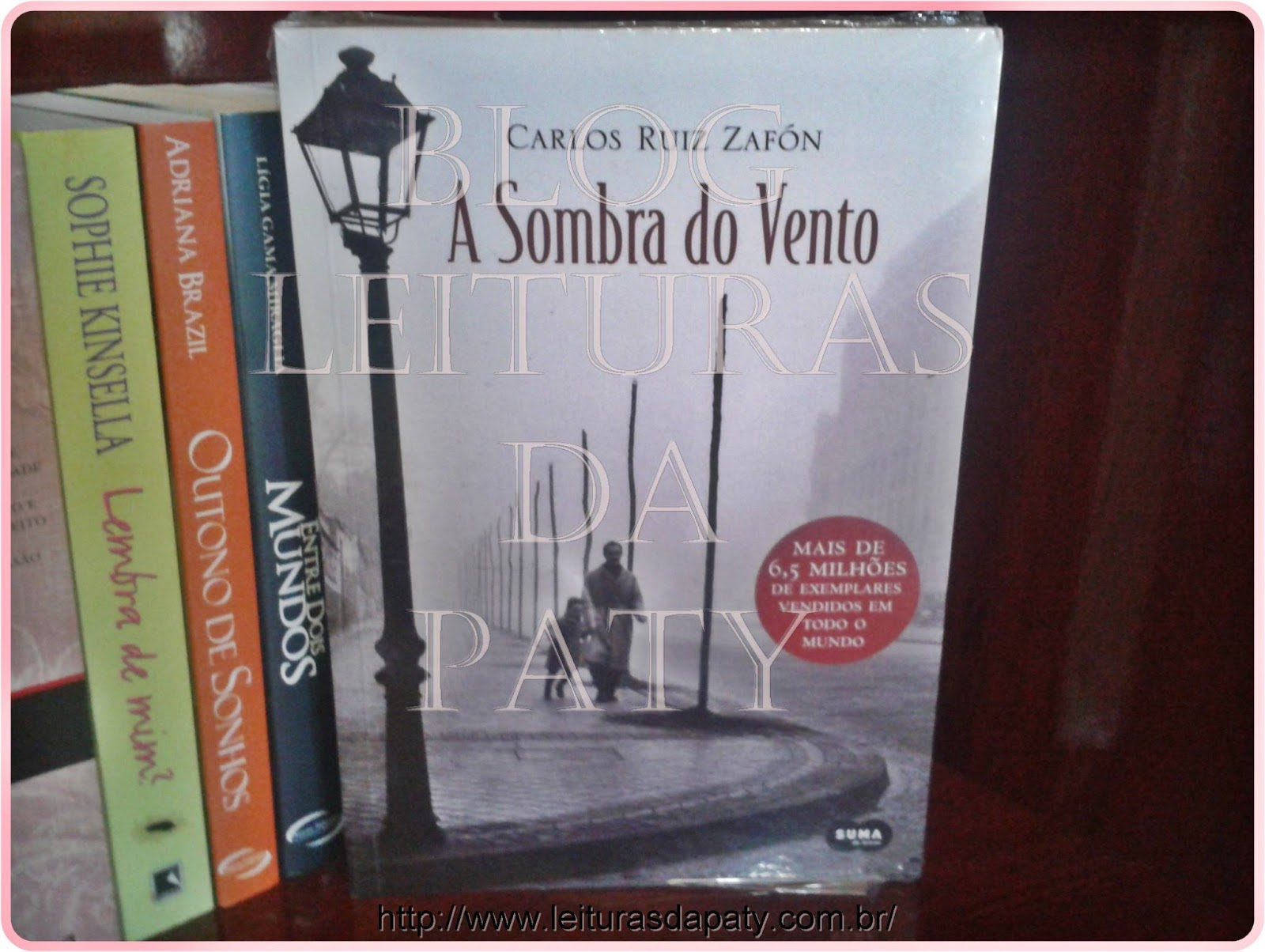 À Sombra do Vento - Carlos Ruiz Zafón - Blog Leituras da Paty