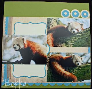 Scrapbook Club - Red Pandas, Whipsnade Zoo