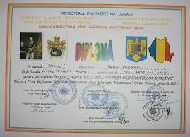 Premiul al II-lea - Andreea Bercu (clasa a XII-a C)...