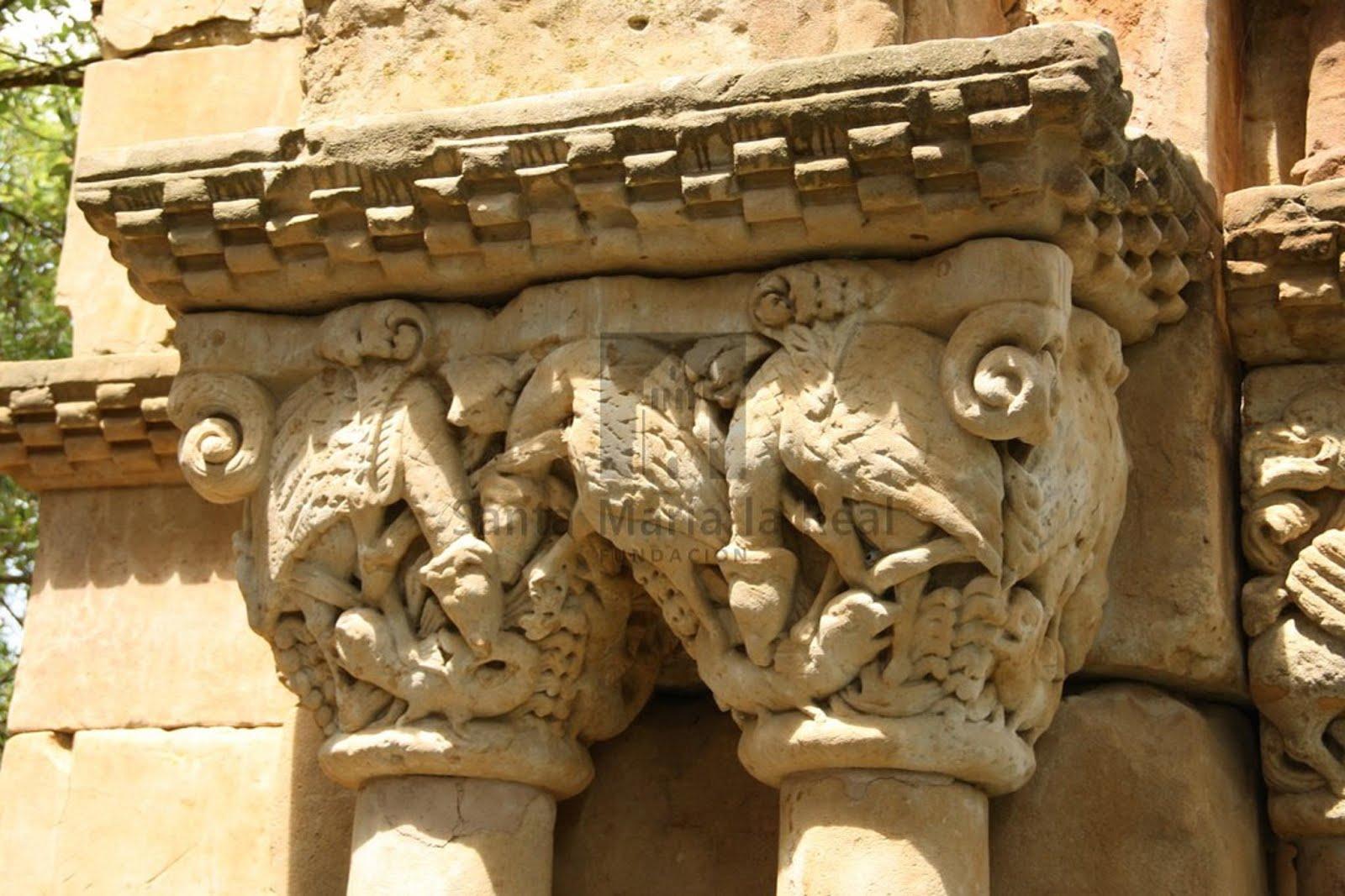 Capitel buitres atacan a su victima