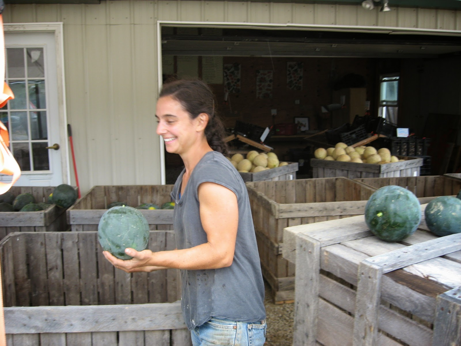 Mira sorting watermelons