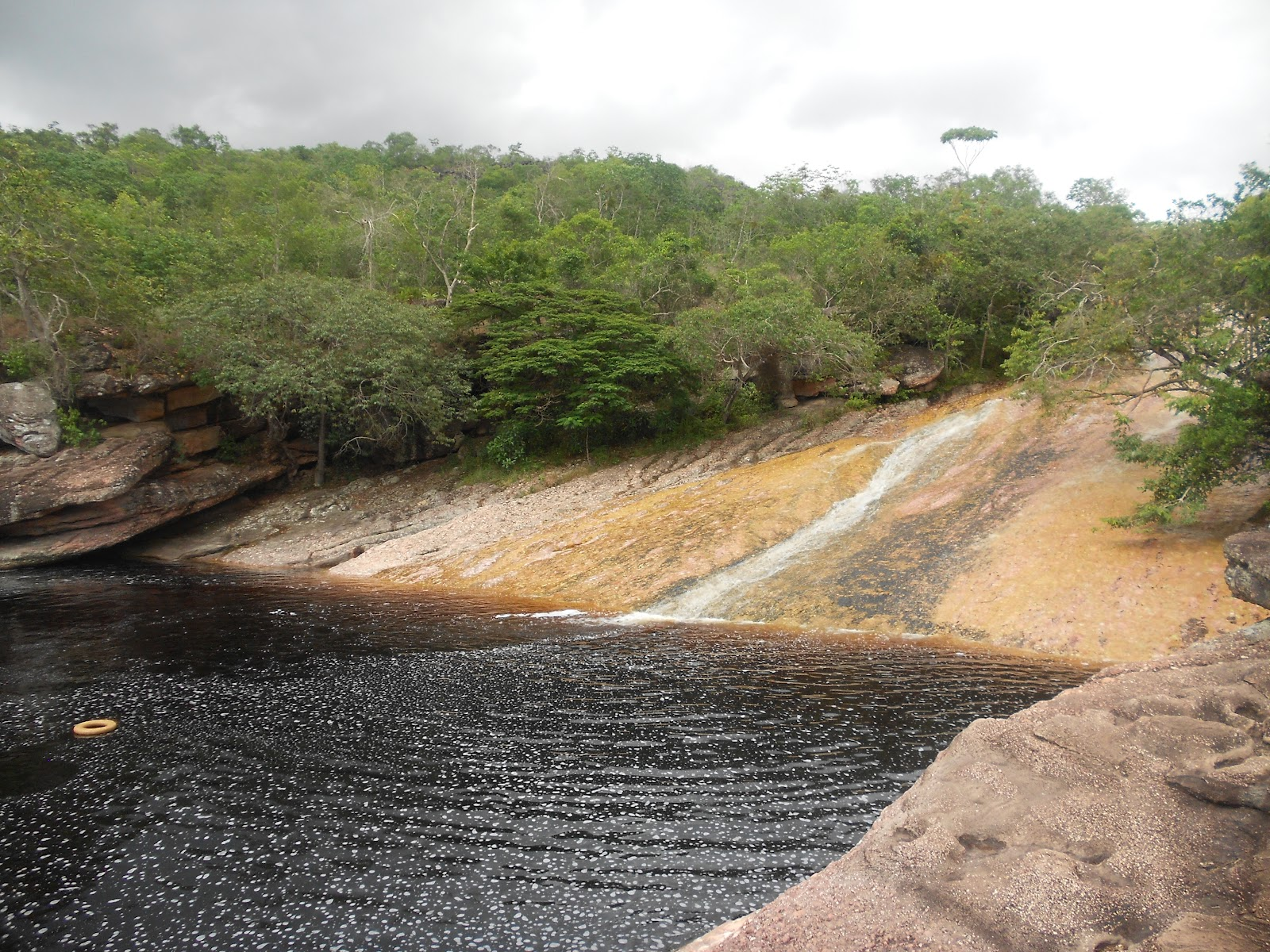 Wannesinbrazilië: maart 2012