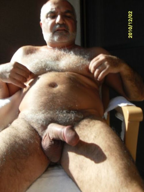 gay bear hairy - older gay hairy cock