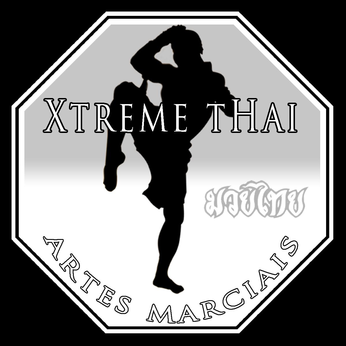 Muay Thai, Boxe e MMA