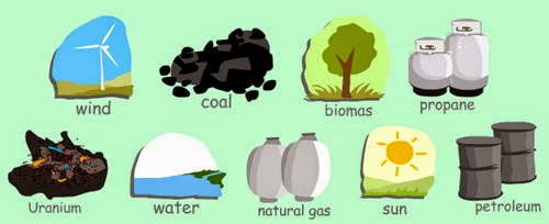 Resources, Ncert / Cbse Revision Notes, Ncert Solutions, Types of Natural Resources, Class 8 Ncert