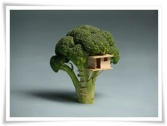 brokoli yang dibina rumah