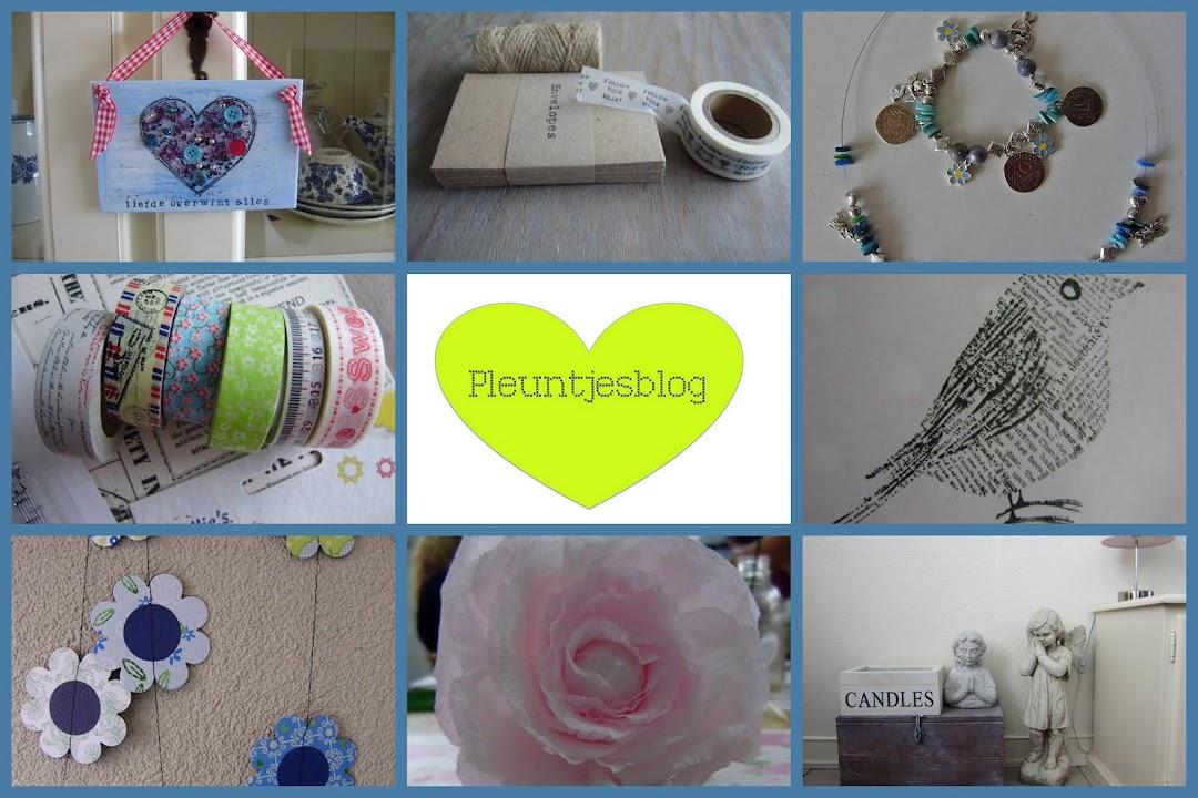 pleuntjes blog