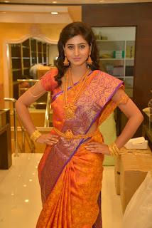Shamili Glamorous new glam pics in Lovely Kanjiwaram Saree and Gold Ornaments